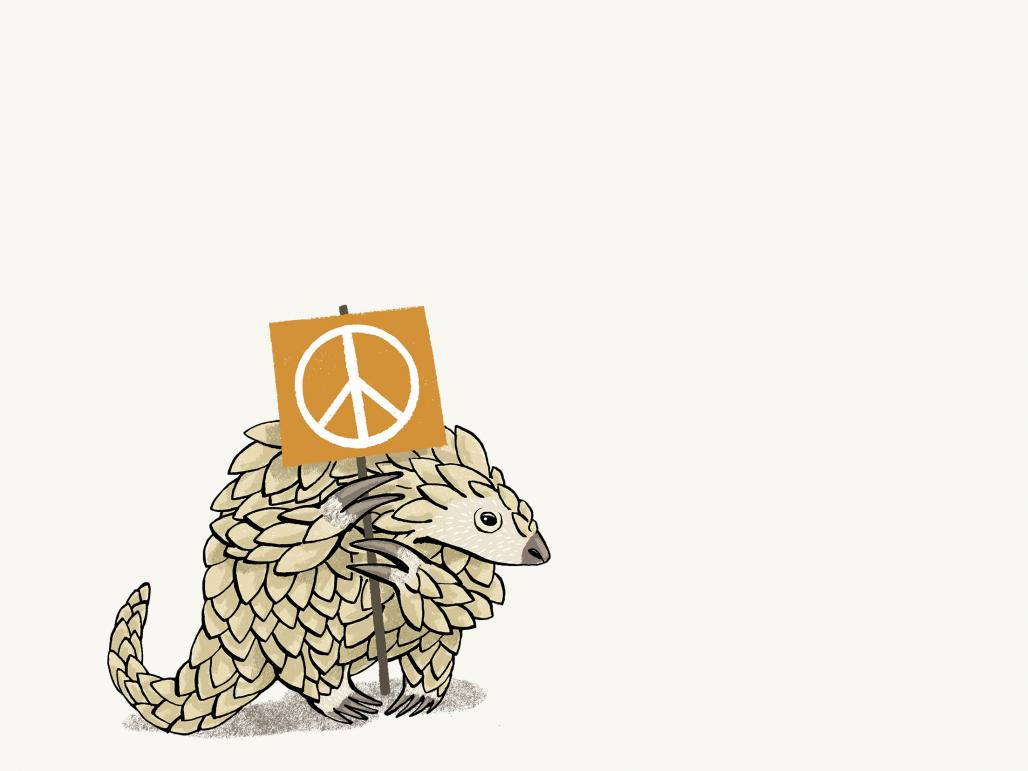 Could Vietnam win the battle to save the pangolin?