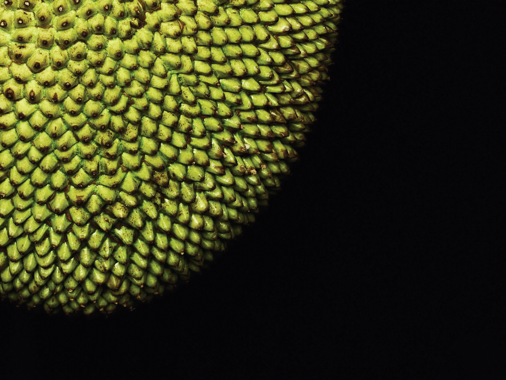 Jackfruit is flavour of the month | 1843