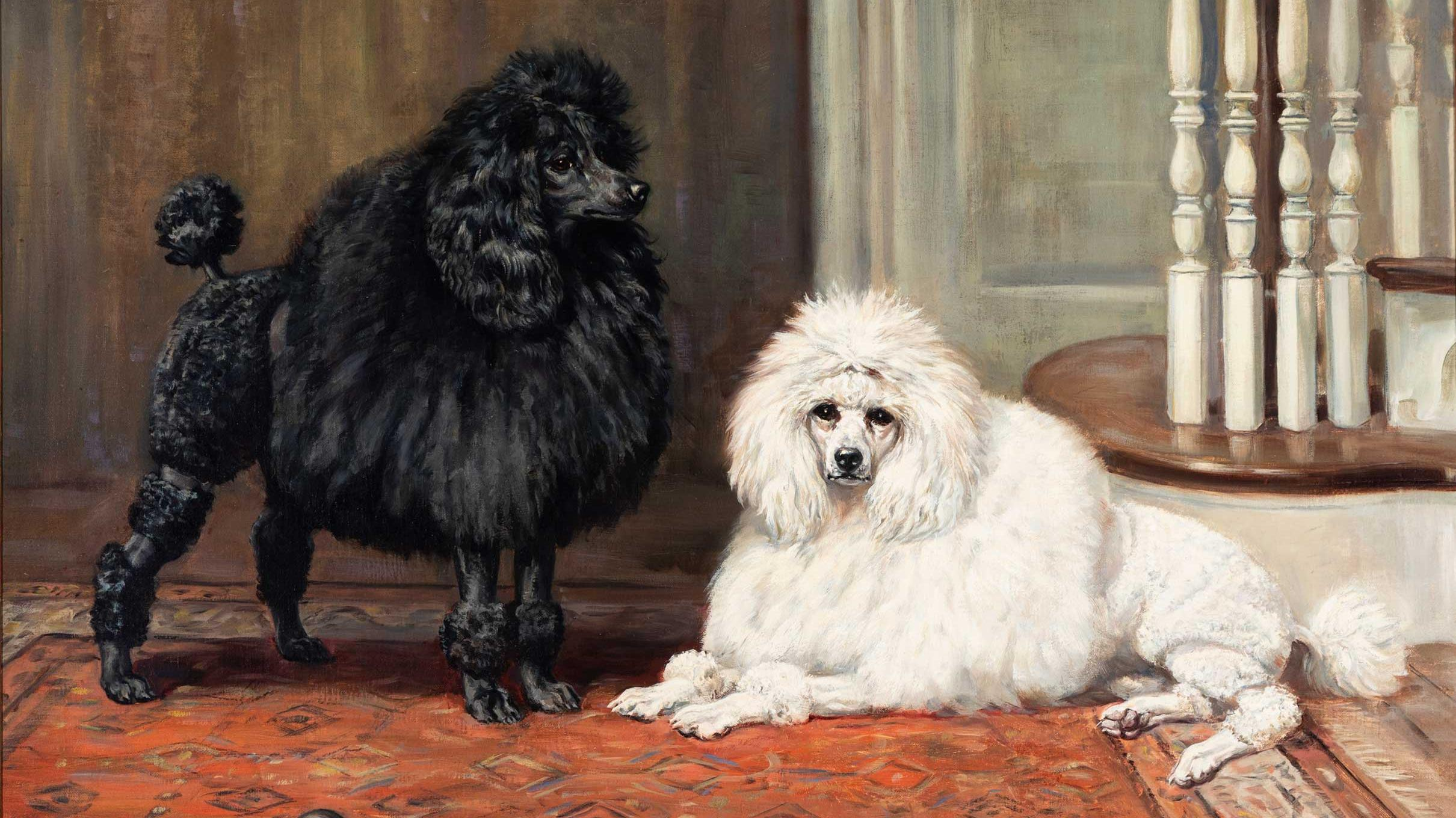 Best in show: inside New York's dog museum